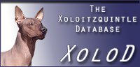 The  Xoloitzquintle database